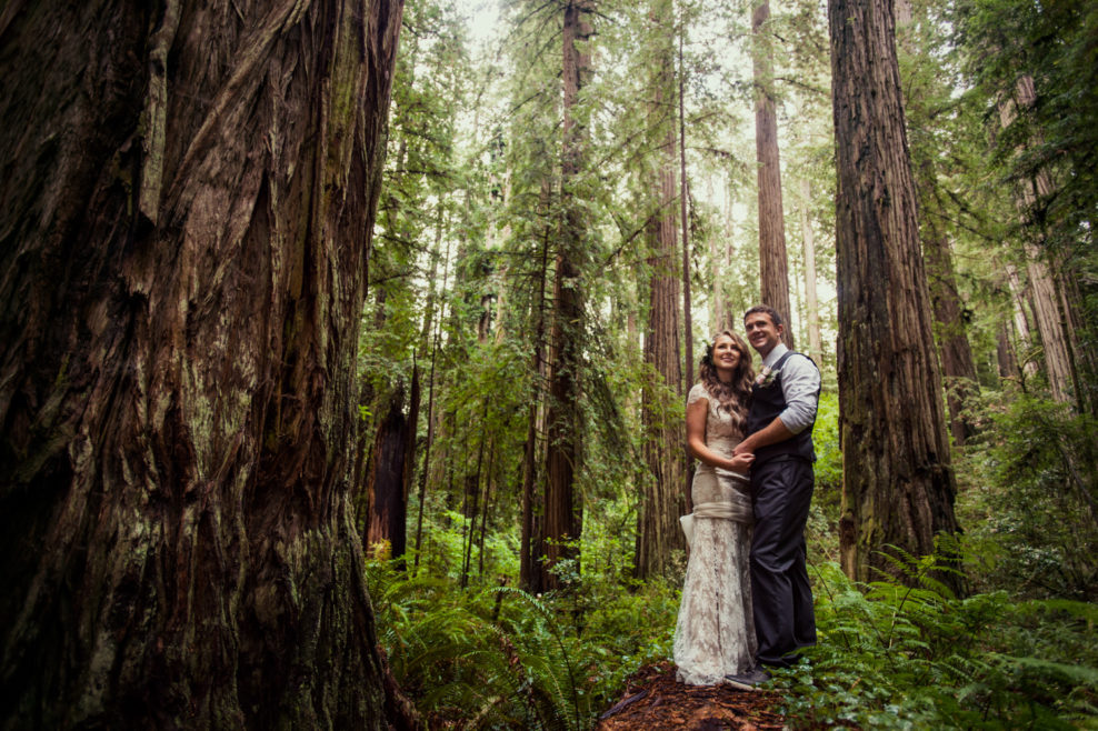 Celica and Craig – California redwoods micro wedding