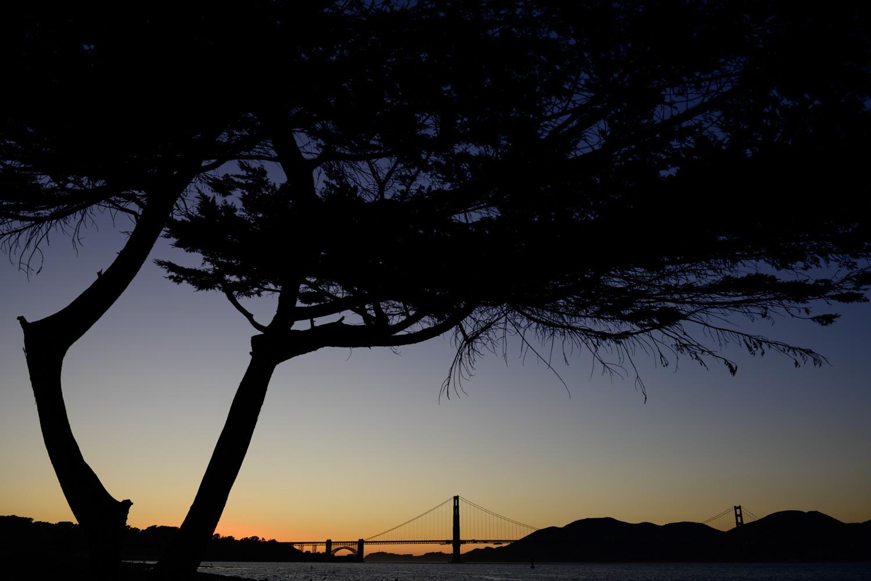 San Francisco minimony